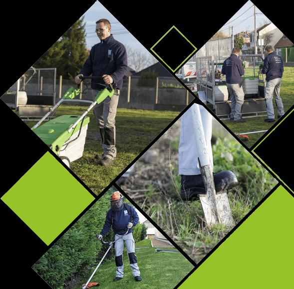 Agenor espaces verts entretien des espaces verts for Tva entretien espaces verts 2016
